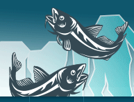 Upcoming Presentations at International Marine Conservation Congress and OceansOnline